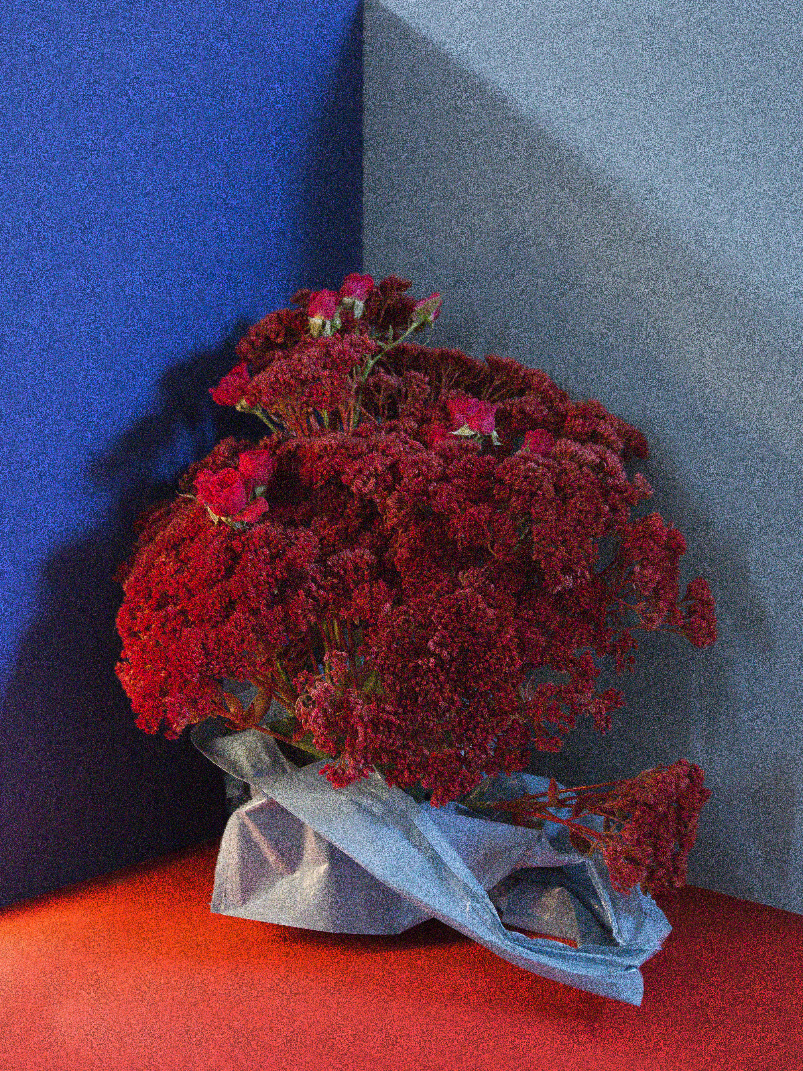 Milou_Floral_roodblauw_3 2